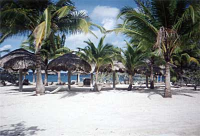 Chankanaab, un parc Naturel à 10% à Cozumel