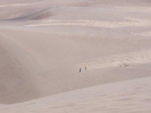 Le sable et l'infini
