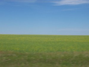 Des plaines verdoyantes