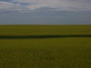 Des prairies.. y'a beaucoup de ciel hein!